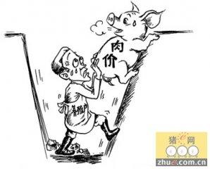 猪肉消费低迷 猪价连跌12周