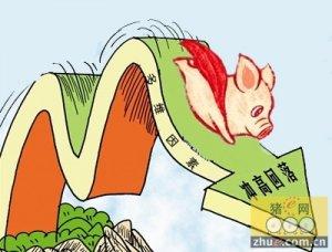猪价又入涨跌互现局面 后期仍将震荡