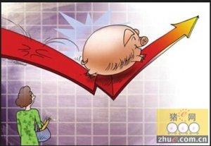 """后市涨幅虽有限 但有利可盈也能成就""""大丰收"""""""