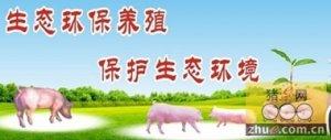 """浙江:江山市生猪养殖污染""""零排放""""模式全省领先"""