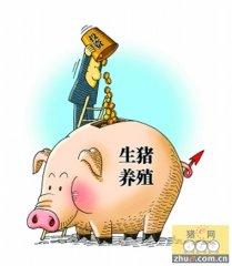 猪价上涨缓慢 雨雪天气有利猪价
