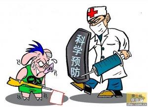 """无法治疗 中国牲畜身上发现""""超级细菌"""""""