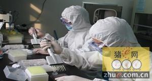 """""""猪流感病毒致病机制与防控技术""""项目获奖"""