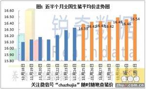 2015年12月2日猪评:东北华南唱主角白条上涨动力不一