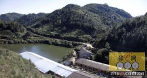 福建福州鼓岭被取缔养猪场死灰复燃 污水流入白眉水库