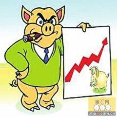 涨幅较大跌幅微小 猪价真能持续涨了!