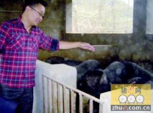 畜禽污染环境 甘肃临泽一猪场负责人被行拘