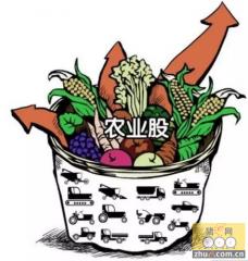 推荐农业春季机会,年底政策、价格双驱动