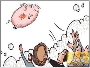 仔猪价格及生猪盈利高位 明年四季度风险大