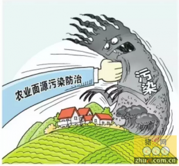 湖南祁东:养猪场发展无序 污染越来越严重