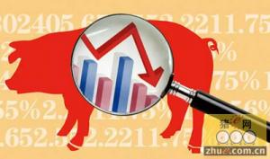 猪价尚未出现我们期待的涨势 后市需求提振猪价