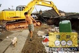宜兴拆猪场进入冲刺阶段 太湖沿线明年要零养殖