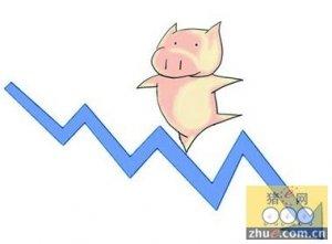 市场供应相对充足 猪价持续小幅下跌