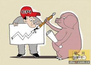 冬至猪价稍有上涨 后市小幅上涨概率较大