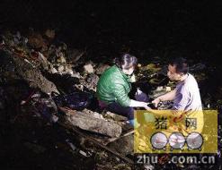 广州端掉4个生猪私宰点 有涉事者以死要挟拒捕