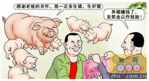 给猪场老板提个醒,管理出效益啊!