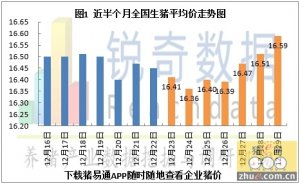 2015年12月30日猪评:涨价态势向东北华北蔓延