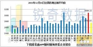 2015年12月31日料评:期价涨势放缓现货价稳定