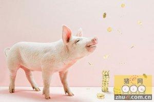 2015年全年生猪均价达到8元 整体行情震荡前行