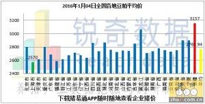2016年1月4日料评:今日油厂现货粕价稳中趋弱