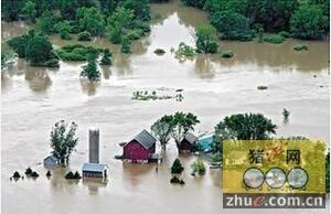 美国中西部遭遇百年一遇洪灾 养猪场关门