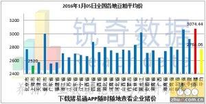 2016年1月5日料评:两大产区深加工收购价下调