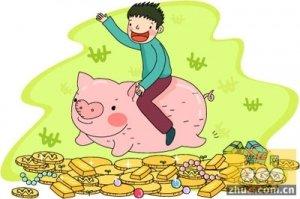 2015年养猪基本上都是赚钱 2016年还将持续