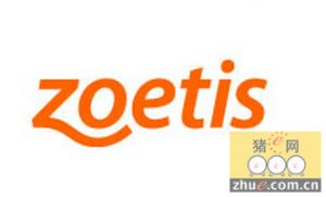 硕腾公司出售旗下动保品牌和生产单元