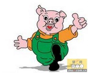 科技部973计划方案出炉 生猪界两大课题入选