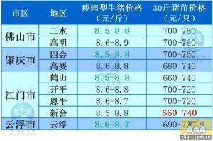 牧之源--广东1月11日猪价
