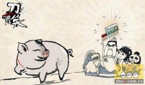 猪肛肿病的防治技术,仔猪饲养要注意肛肿病