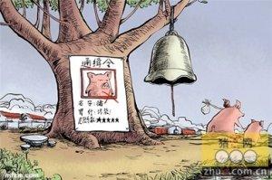 深圳最后一家生猪批发市场6月底前关闭