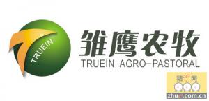 雏鹰农牧:猪价再涨+大股东增持 买入评级