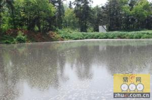广东丹霞山存在生态环境安全隐患养猪场废水直排