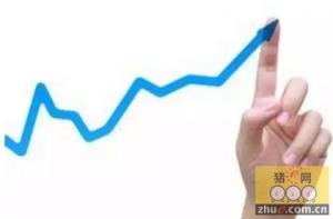 安徽合肥:春节临近 猪肉价格开始小幅上涨