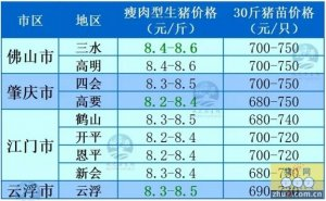 牧之源-广东01月17日猪讯