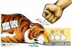 广东2015年查办涉农犯罪1277人 生猪补贴被占逾6千万