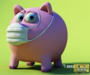 巴基斯坦暴发猪流感疫情