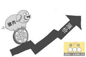 市场库存耗尽生猪存栏减少 春节肉价还将