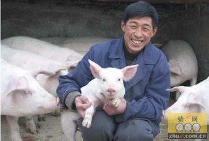 个人总结:养猪生产中的十大错误技术