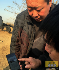 防止肉价大幅波动 河北省级冻猪肉保持储备2000吨