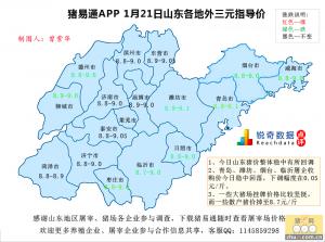 猪易通APP01月21日山东地区外三元价格地图