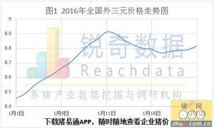 华东猪价因天气而言,众区皆涨唯鲁下调