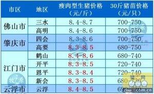 牧之源--广东1月21日猪价