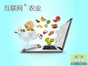 《农业电子商务试点方案》正式出台!