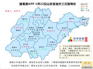 猪易通APP01月22日山东地区外三元价格地图