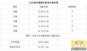 1月23日辽宁省猪评:未来几天毛猪价格以平稳为主
