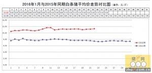 北京新发地猪肉每周市场动态(2016.1.16-2016.1.22)