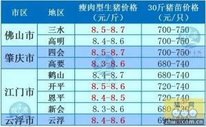 牧之源--广东1月23日猪价