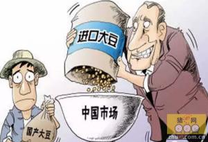 进口豆来势汹汹 国内大豆产业如何转型